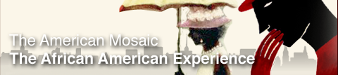 American Mosaic Databases