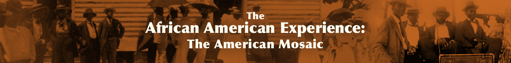 ABC-CLIO Solutions - The American Mosaic: The African American Experience